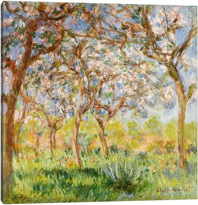 Spring at Giverny  Canvas Print #BMN4977