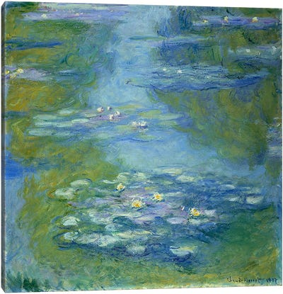 Waterlilies, 1907  Canvas Art Print
