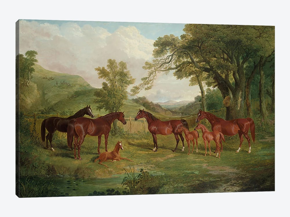 The Streatlam Stud, Mares and Foals, 1836  by John Frederick Herring Sr 1-piece Canvas Art Print