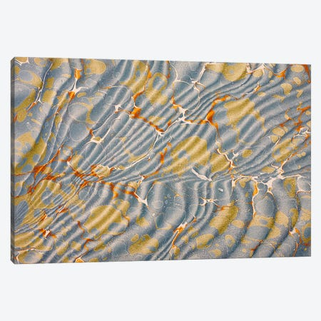 Decorative end paper VIII Canvas Print #BMN4997} by English School Canvas Print