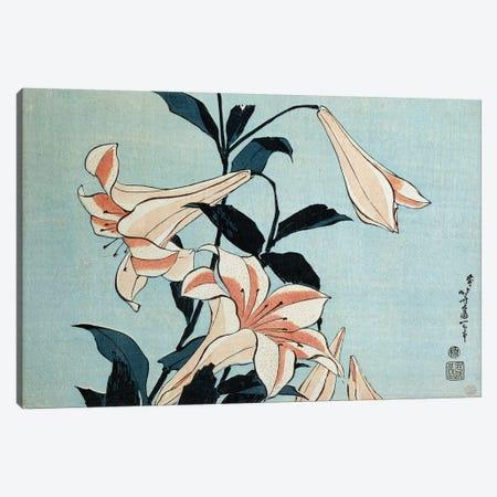 Trumpet lilies  Canvas Print #BMN5003} by Katsushika Hokusai Canvas Art Print