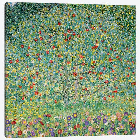 Apple Tree I, 1912  Canvas Print #BMN5015} by Gustav Klimt Canvas Print