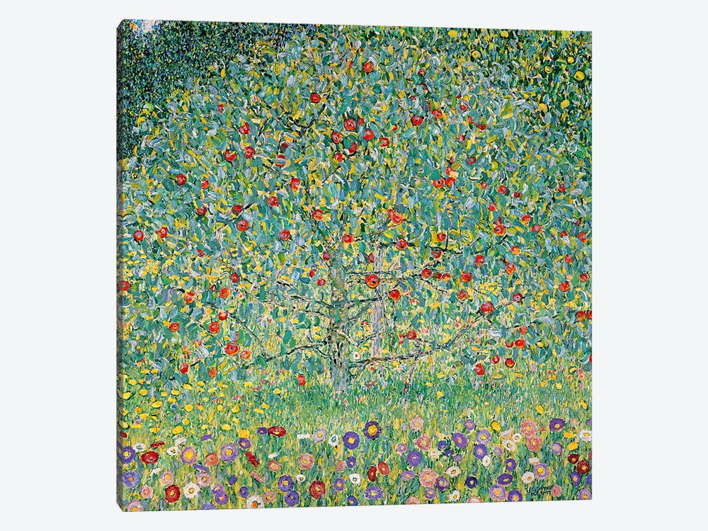 Apple Tree (Apfelbaum), 1912  by Gustav Klimt 1-piece Canvas Print