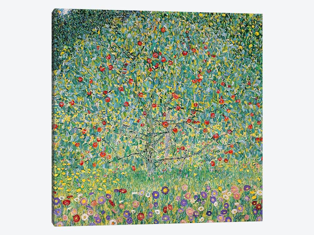 Apple Tree (Apfelbaum), 1912  by Gustav Klimt 1-piece Canvas Print