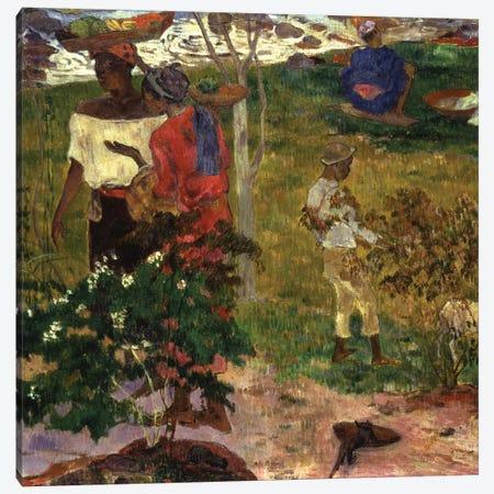 Topical Conversation, 1887  Canvas Print #BMN5042} by Paul Gauguin Art Print