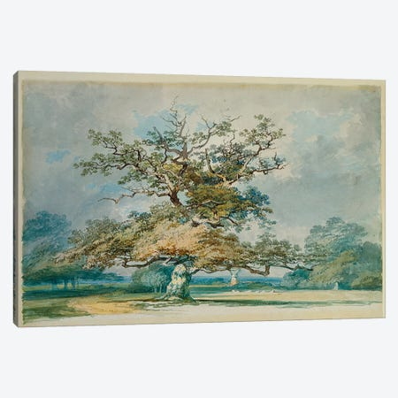 A Landscape with an Old Oak Tree  Canvas Print #BMN5049} by J.M.W Turner Canvas Print