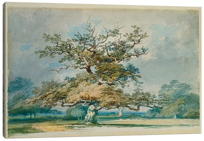 A Landscape with an Old Oak Tree  Canvas Art Print