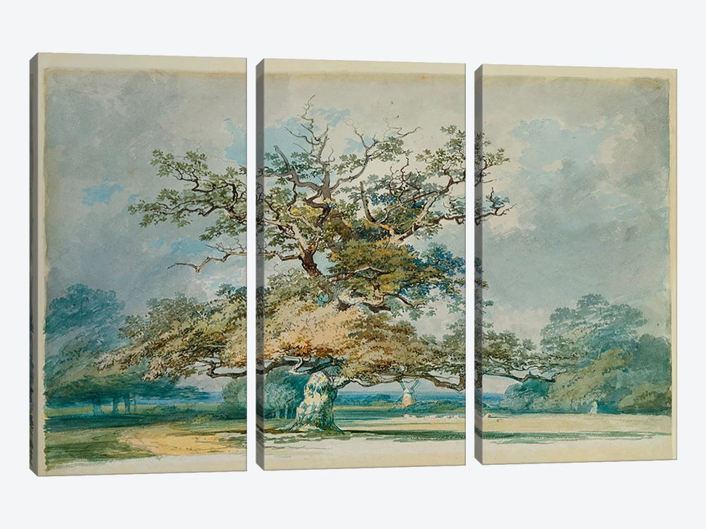 A Landscape with an Old Oak Tree  3-piece Canvas Art