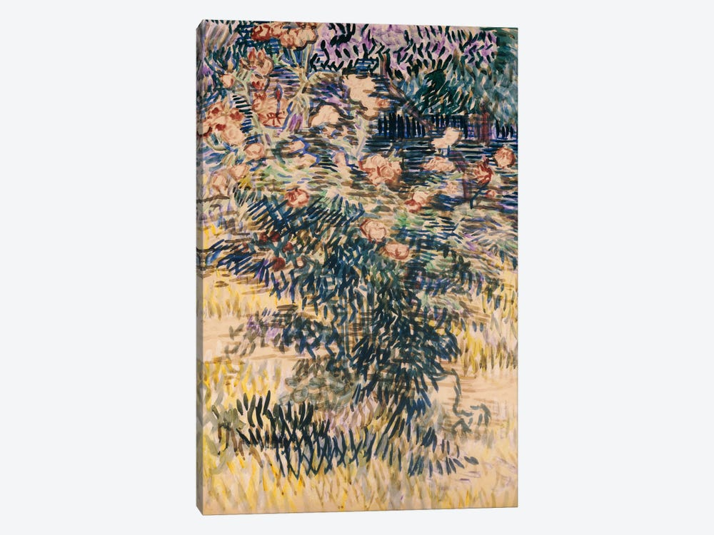 Oleanders, the Hospital Garden at Saint-Remy, 1889 by Vincent van Gogh 1-piece Art Print