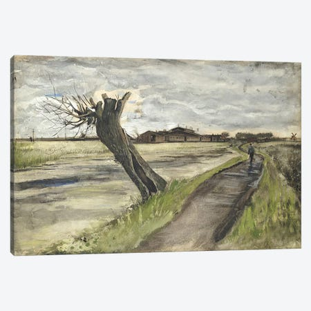 Pollard Willow, 1882  Canvas Print #BMN5131} by Vincent van Gogh Canvas Print