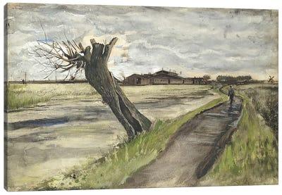 Pollard Willow, 1882  Canvas Print #BMN5131