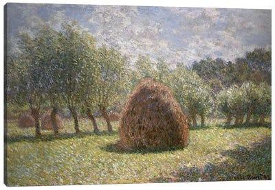 Haystacks at Giverny, 1893  Canvas Print #BMN5142