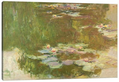 Lily Pond, 1881  Canvas Print #BMN5157