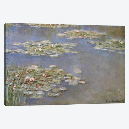 Nympheas, c.1905  Canvas Print #BMN5171} by Claude Monet Art Print