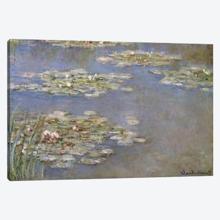 Nympheas, c.1905  Canvas Print #BMN5171} by Claude Monet Art Print