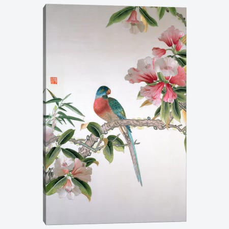 Jay on a flowering branch, Republic period  Canvas Print #BMN517} by Chinese School Canvas Print