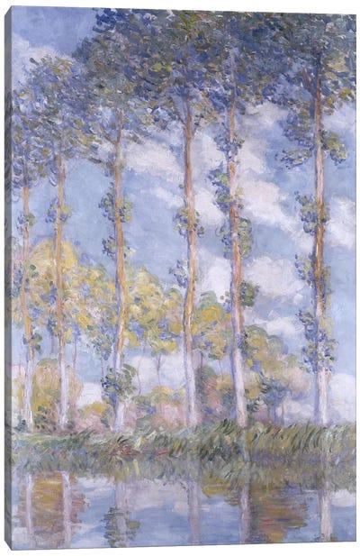 The Poplars, 1881  Canvas Art Print