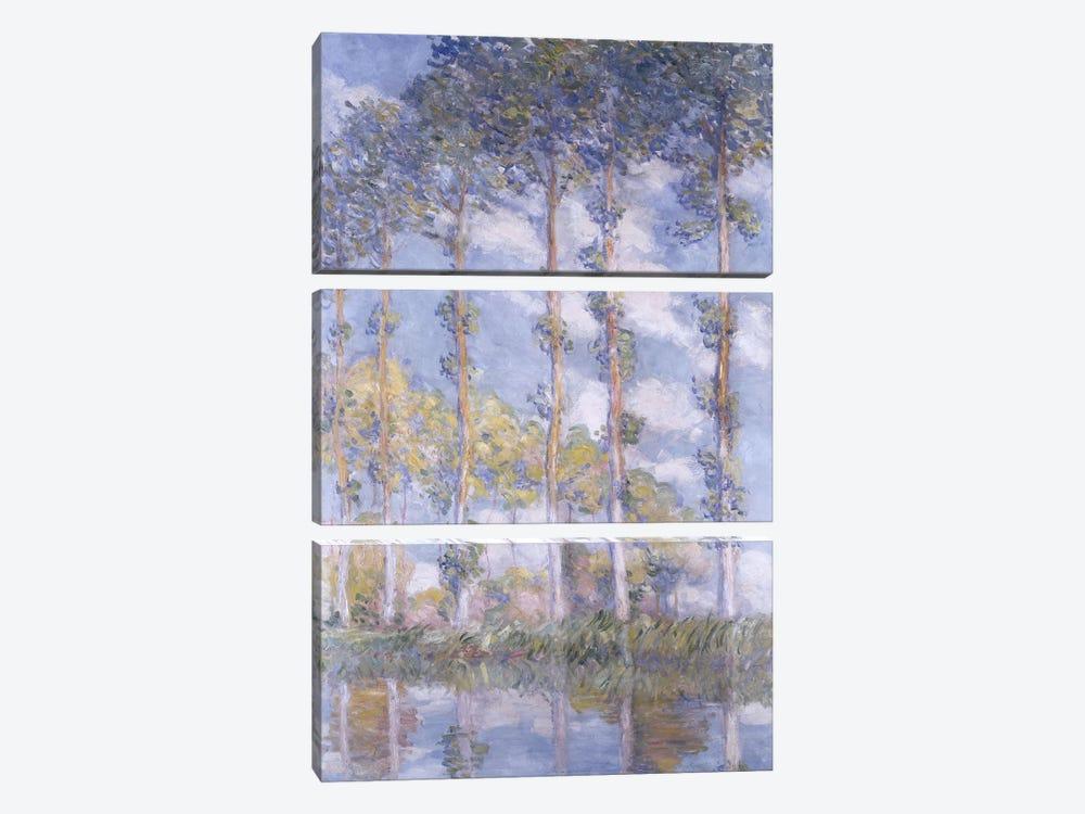 The Poplars, 1881  by Claude Monet 3-piece Art Print