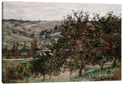 Apple Trees near Vetheuil  Canvas Art Print