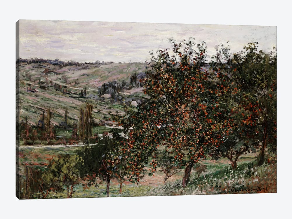 Apple Trees near Vetheuil  by Claude Monet 1-piece Canvas Print