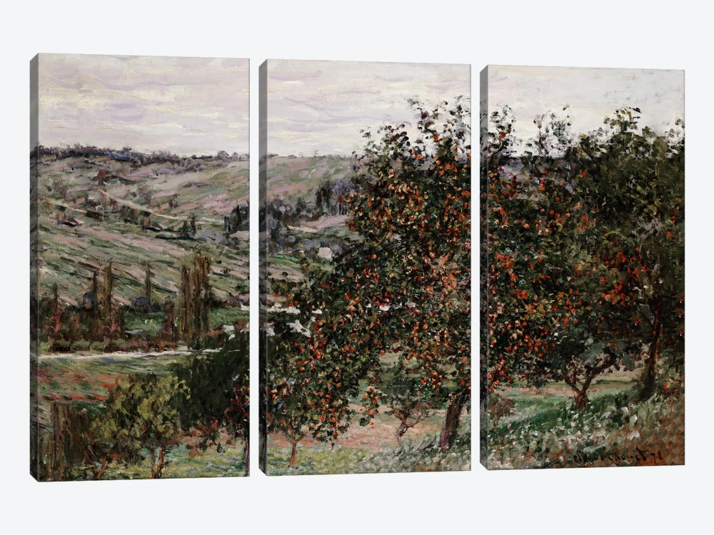 Apple Trees near Vetheuil  by Claude Monet 3-piece Canvas Print