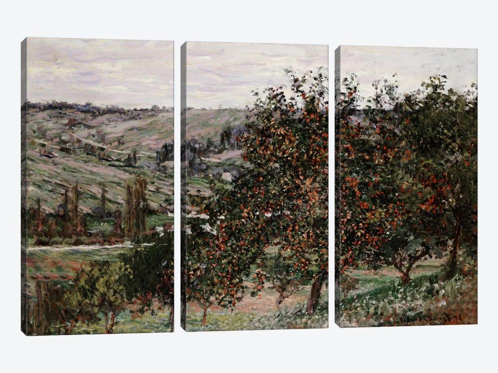 Apple Trees near Vetheuil  by Claude Monet 3-piece Canvas Print