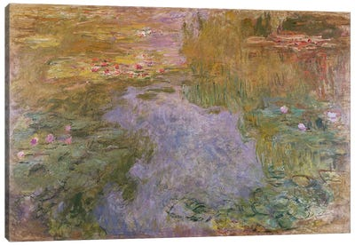 Water Lilies, 1919  Canvas Print #BMN5215
