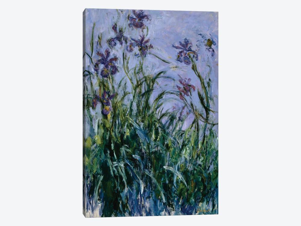 Purple Irises, 1914-17  by Claude Monet 1-piece Canvas Artwork
