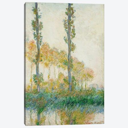 The Three Trees, Autumn, 1891  Canvas Print #BMN5224} by Claude Monet Canvas Wall Art