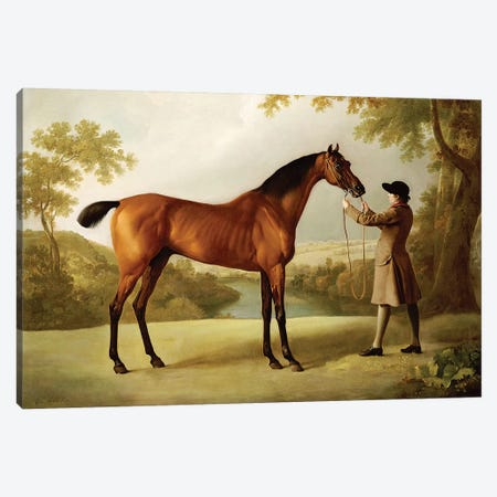 Tristram Shandy, a Bay Racehorse Held by a Groom in an Extensive Landscape, c.1760  Canvas Print #BMN5237} by George Stubbs Canvas Art Print