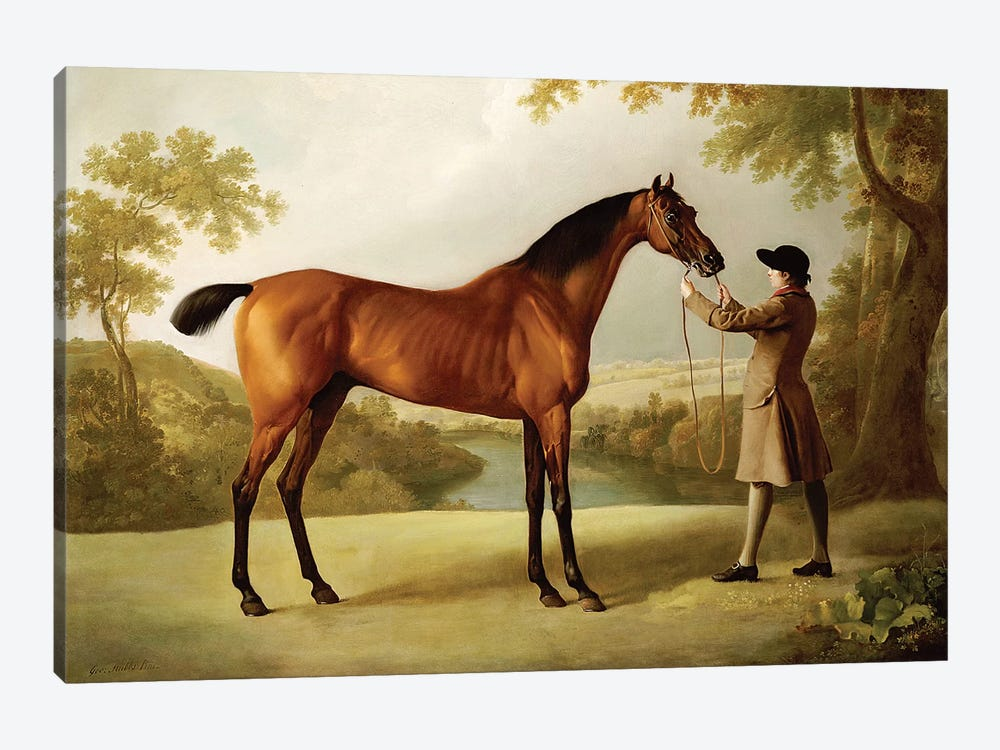 Tristram Shandy, a Bay Racehorse Held by a Groom in an Extensive Landscape, c.1760  by George Stubbs 1-piece Canvas Wall Art