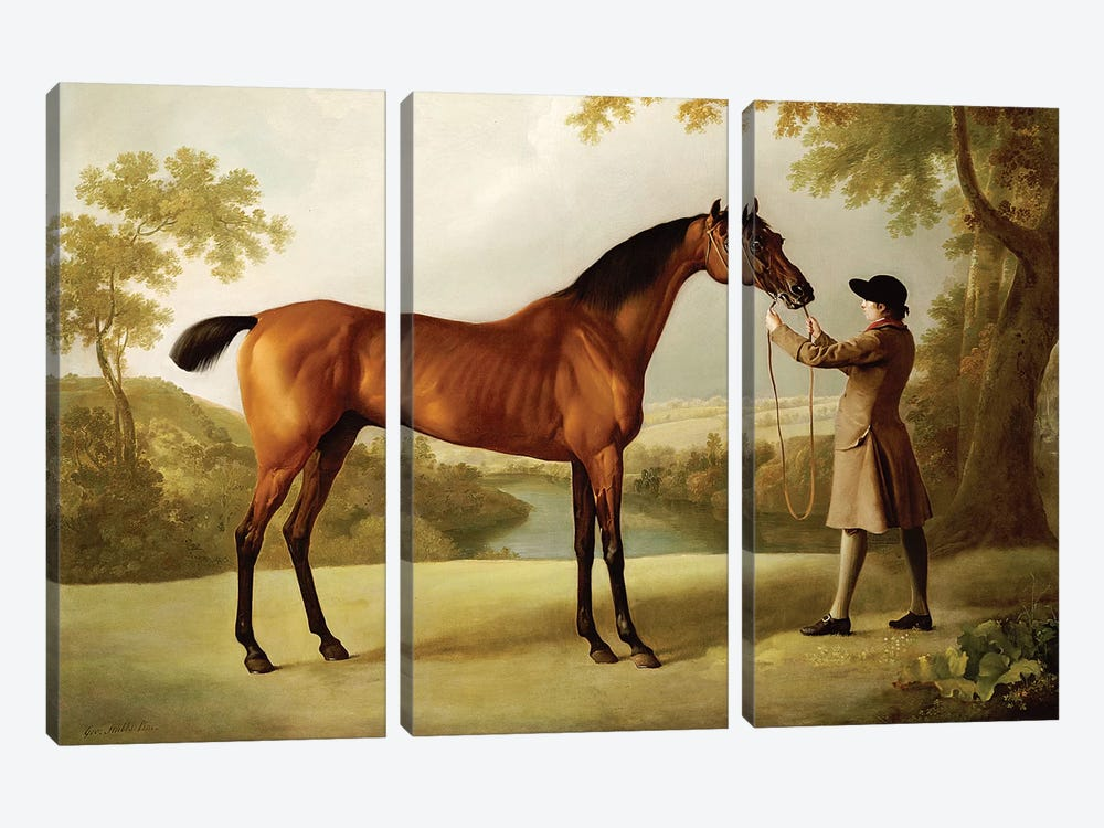 Tristram Shandy, a Bay Racehorse Held by a Groom in an Extensive Landscape, c.1760  by George Stubbs 3-piece Canvas Art