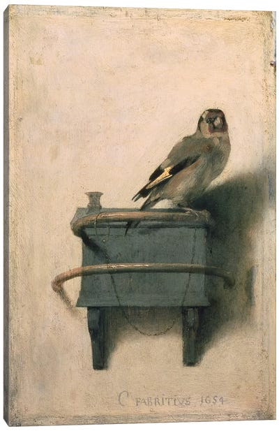 The Goldfinch, 1654  Canvas Art Print
