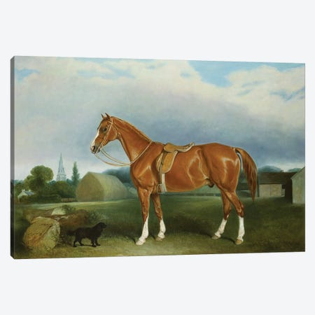 A Chestnut Hunter and a Spaniel by Farm Buildings  Canvas Print #BMN5247} by John E. Ferneley Canvas Art
