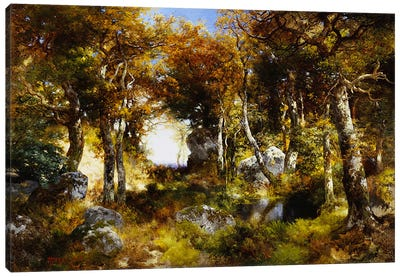 The Woodland Pool, 1909 Canvas Art Print