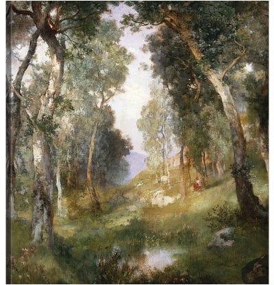 Forest Glade, Santa Barbara, 1918  Canvas Art Print