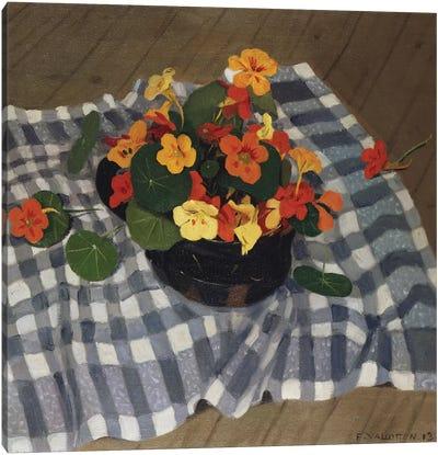 Bowl of Nasturtiums  Canvas Art Print