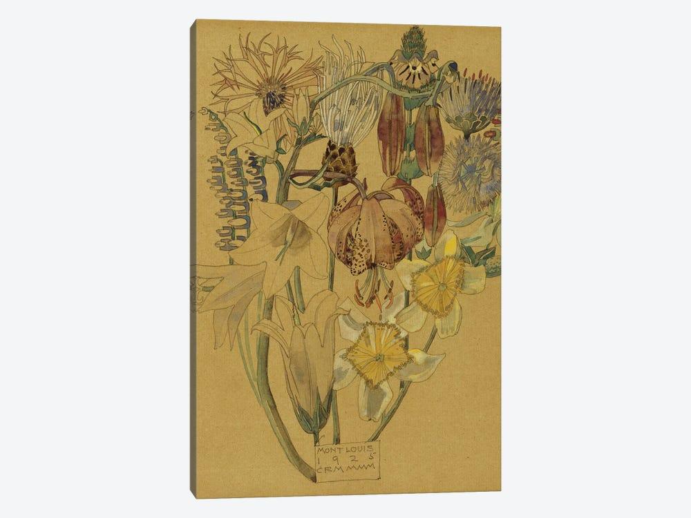 Mont Louis - Flower Study, 1925  by Charles Rennie Mackintosh 1-piece Canvas Art Print