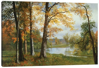 A Quiet Lake  Canvas Art Print