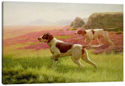 Pointers in a Landscape, 19th century Canvas Art Print