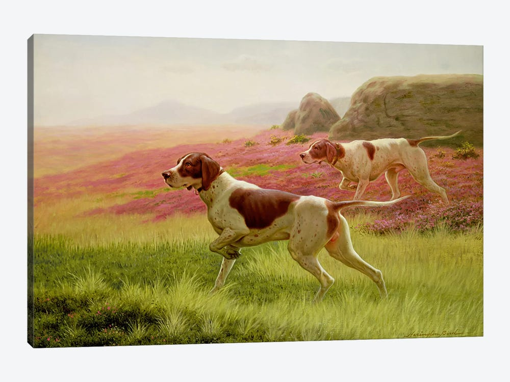 Pointers in a Landscape, 19th century by Harrington Bird 1-piece Canvas Artwork