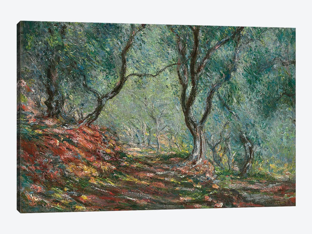 Olive Trees in the Moreno Garden, 1884  by Claude Monet 1-piece Canvas Artwork