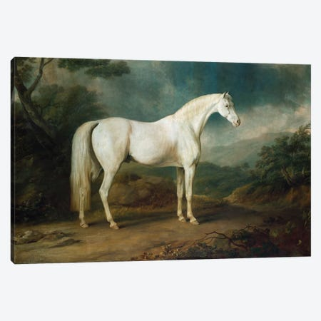 White horse in a wooded landscape, 1791  Canvas Print #BMN5349} by Sawrey Gilpin Canvas Artwork