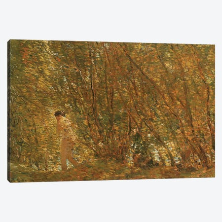 Under the Alders, 1904  Canvas Print #BMN5371} by Childe Hassam Canvas Print
