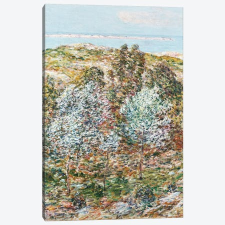 Springtime Vision, 1900  Canvas Print #BMN5386} by Childe Hassam Canvas Print