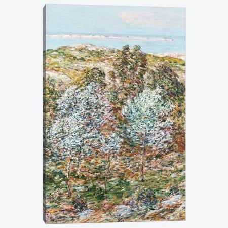 Springtime Vision, 1900  Canvas Print #BMN5386} by Childe Hassam Canvas Print