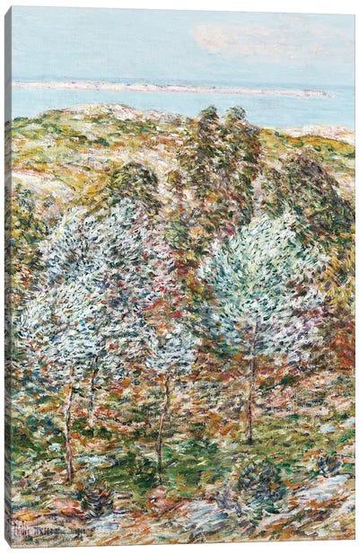 Springtime Vision, 1900  Canvas Art Print