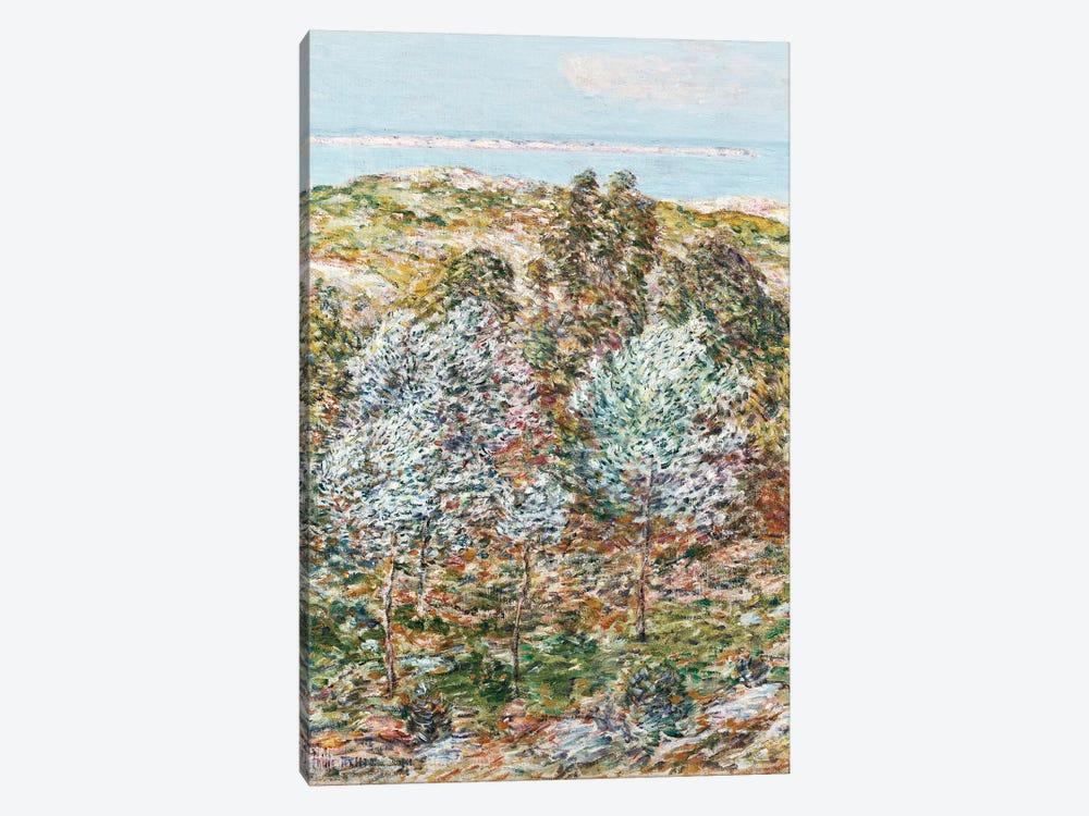 Springtime Vision, 1900  by Childe Hassam 1-piece Canvas Art Print