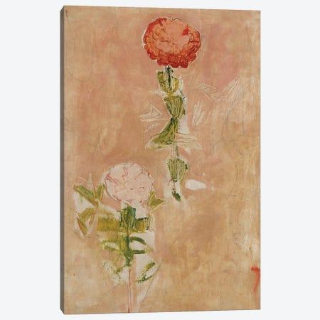 Zynien  Canvas Print #BMN5395} by Ferdinand Hodler Canvas Artwork