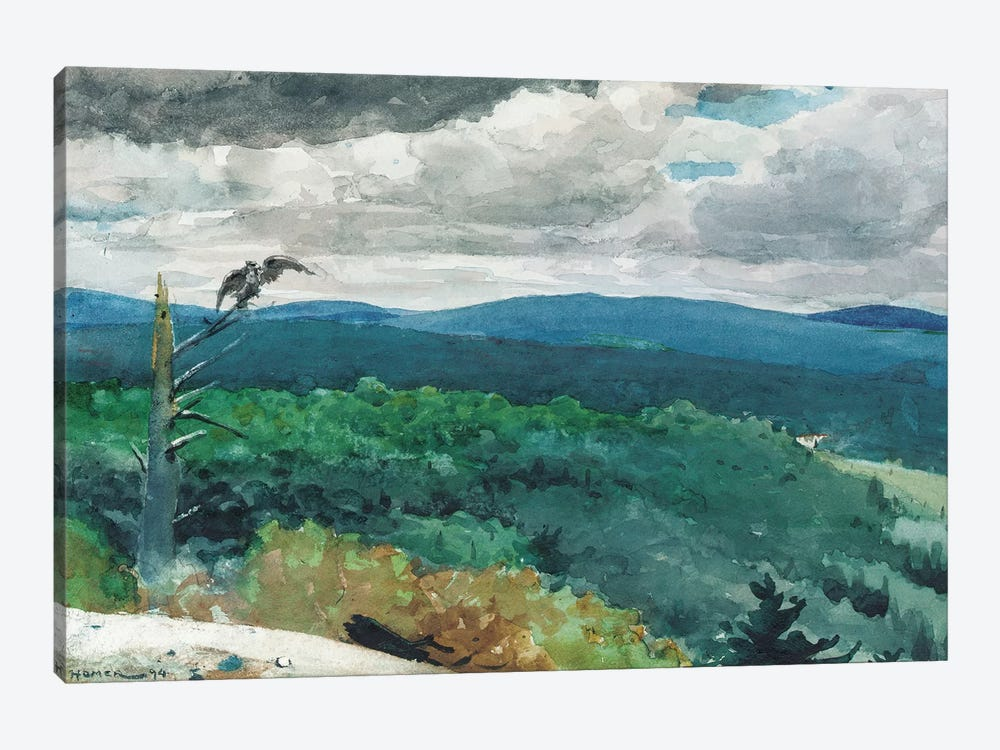 Hilly Landscape, 1894  by Winslow Homer 1-piece Canvas Wall Art